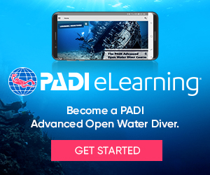 eLearning_AOW_divers_300x250