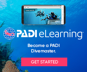 eLearning_DM_divers_bnrs300x250