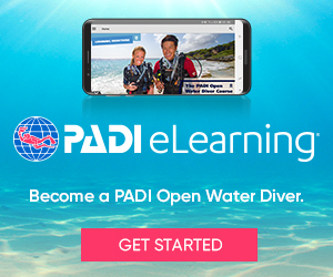 eLearning_OW_non-divers_300x250